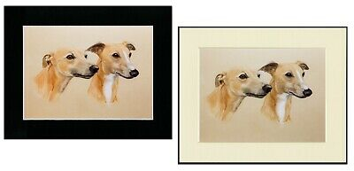 SALUKI TWO DOGS HEAD STUDY CHARMING  DOG ART PRINT MOUNTED READY TO FRAME