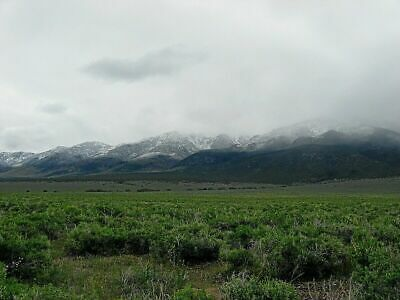 Rare 60 Acre Elko Nevada Ranch! In Mountain Foothills! Cash Sale! No Reserve!