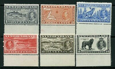 Newfoundland 1937 Long Coronation issue complete to 14 cents MM