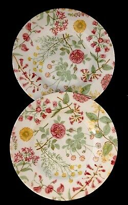 "2 Royal Stafford England HEDGEROW Fine EARTHENWARE 8 1/2"" Salad Lunch Plate EUC"