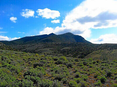 Ultra Rare 40 Acre Nevada Ranch! Adjoins Blm Land! Near Reservoir! In Foothills!