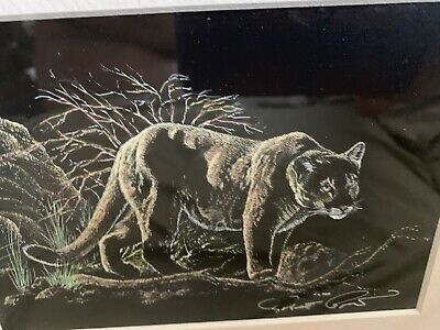 "Robert Barclay Pow ""Wild Cat"" Painting Signed By Artist In Front/Backof Theframe"