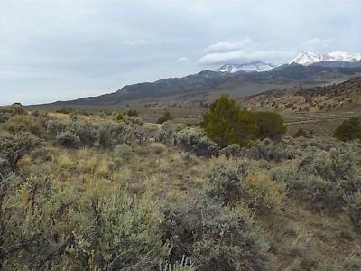 Rare 44 Acre Colorado Mountain Ranch! Direct Road Access!