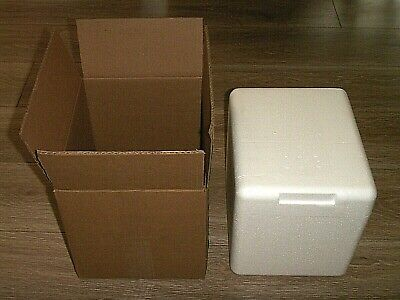 STYROFOAM INSULATED FRAGILE COOLER SHIPPING CONTAINER CUBE 11x10x9 + OUTER BOX
