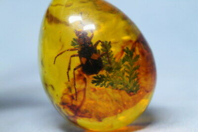 Collectable Decorative Amber Inlay Insects Beautiful Handwork Auspicious Pendant