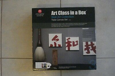 + Complete Canvas Artists Set + Art Lessons  [Art Class In A Box] Brand New