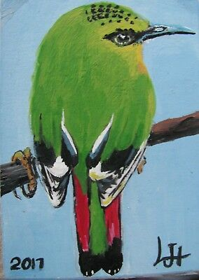 ".A531      .Original Acrylic Aceo  Painting By Ljh  ""Fire-Tailed Myzornis"" Bird"