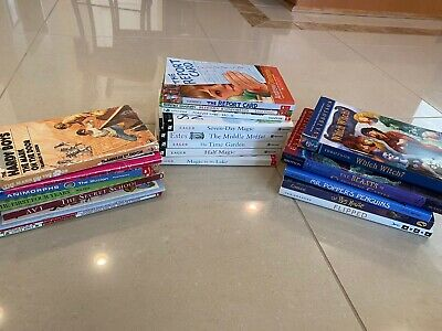 Lot of 20 Chapter Books Youth Early Reader Young Adult Children (boys & girls)