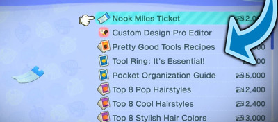 (REOPEN) Animal Crossing New Horizons Nook Miles Tickets