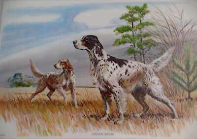 english setter birthday party animal gift dog art tile coasters gifts tiles
