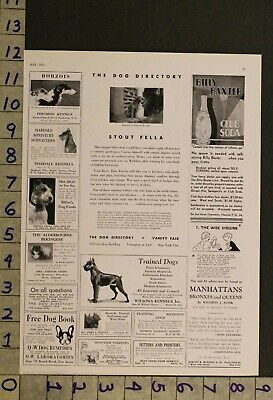 1931  Dog Canine Kerry Blue Terrier Puppy Breeder Photo Ad Ru24