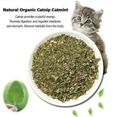 Catnip Dried WOW Fresh High Quality Filled Fresh Everyday S2E2