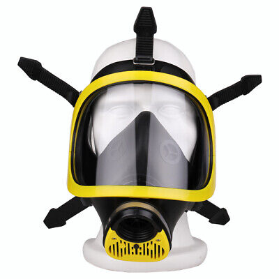 Fenan BW1000 Resuable Full Face Respirator with P2R Filter