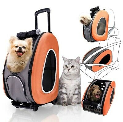 Ibiyaya EVA Pet Carrier/ Pet Wheeled Carrier –Tangerine-Open Box