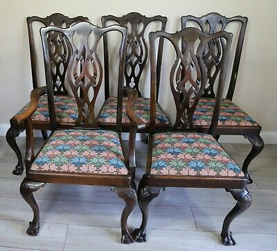 Set of Edwardian Dining Chairs with Ball and Claw Feet