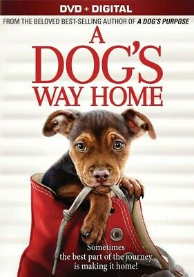 a Dog's Way Home 2019 PG Family Adventure Movie DVD Ashley Judd - DISC ONLY