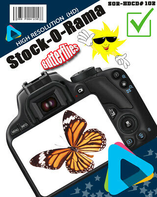 "Stock-O-Rama ""Butterflies ""  {HD} Royalty Free Stock Photos CD-Rom#2"