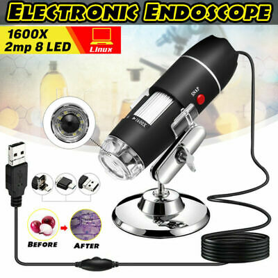 3In1 1600X Enfoque HD 1080P USB Digital Lupa Microscopio Endoscopio Video Cámara