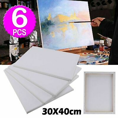 Blank Artist Canvas Art Board Plain Painting Stretched Framed Large 30cmx40cm