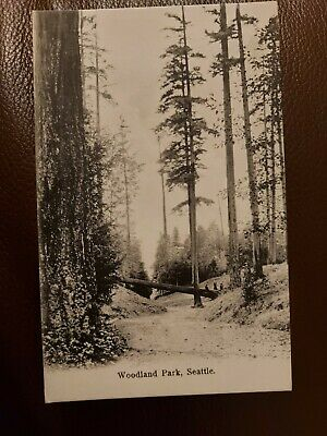 Vintage Picture Postcard:-Seattle, Woodland Park (unposted)