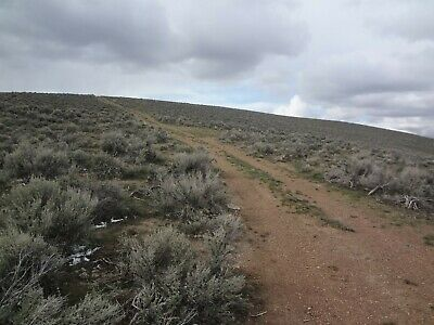Rare 40 Acre Elko Nevada Ranch 5 Star Setting!  Bidding On The Down Payment