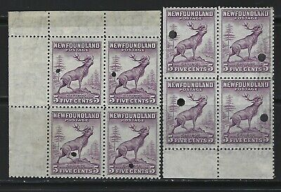 NEWFOUNDLAND - #257 - 5c CARIBOU BLOCKS WITH SECURITY PUNCH LARGE & SMALL HOLES