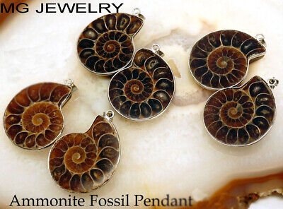 50 Pcs Lot Natural Ammonite Fossil Gemstone 925 Sterling Silver Plated Pendants