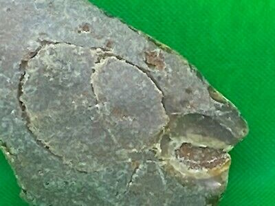 Paleo / neolithic fantastic flint rock art human with crystal mouth uk