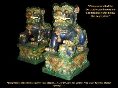 Antique Exceptional Chinese Huge Pair of Ceramic Temple Foo Dogs Lions 45cm H.
