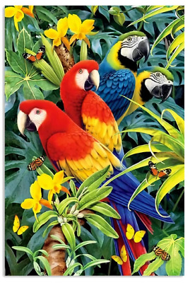 Parrot Beautiful Birds Gift Poster No Frame