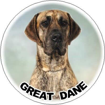 2 Great Dane Brindle Car Stickers By Starprint