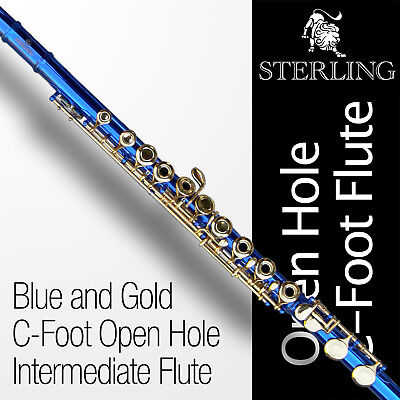 Black and Silver OHC Flute • STERLING Open Hole C Flute • 16 keys • Brand New •