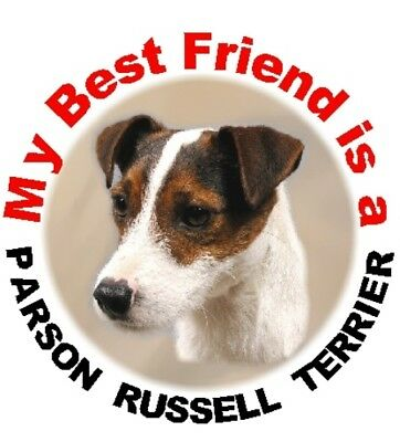 """Jack Russell Terrier Dog Fridge Magnet /""""My Favourite Colour is Dog Hair/"""""""