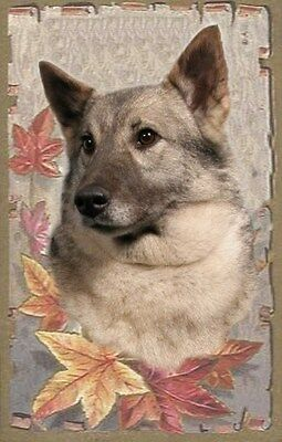 Elkhound A6 Dog Notelets/Blank Cards No 3 By Starprint