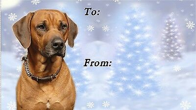 Rhodesian Ridgeback Christmas Labels by Starprint