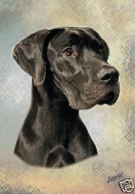 Great Dane A6 Blank Card No 5 By Starprint