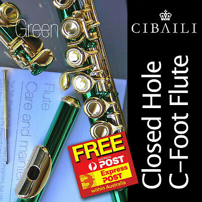 WAGNER Student C-foot FLUTE •  CHC 16keys • BRAND NEW • PERFECT FOR SCHOOL •