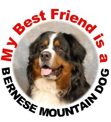 2 Bernese Mountain Dog Car Stickers By Starprint