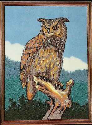 Punch Needle Embroidery large Eagle Owl A3 kit by Webster Craft