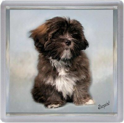 Lhasa Apso Coaster No 3 by Starprint