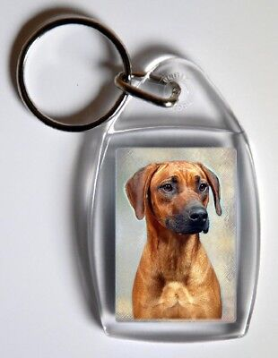 Rhodesian Ridgeback Key Ring By Starprint
