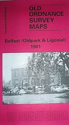 Old Ordnance Survey Map  Belfast Oldpark 1901 Sheet 60.04 New