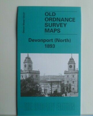 Old Ordnance Survey Map Devon Devonport North  1893 Sheet 123.07 Godfrey Edition