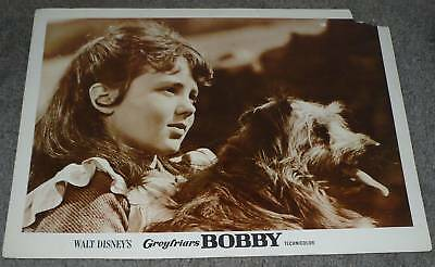 GREYFRIARS BOBBY 11x14 SKYE TERRIER original DISNEY 1961 movie lobby card poster
