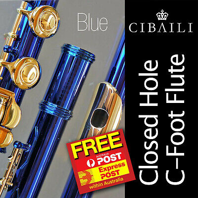 SILVER-PLATED C FLUTE with 24K Gold Keys • BRAND NEW • Case • Perfect for School