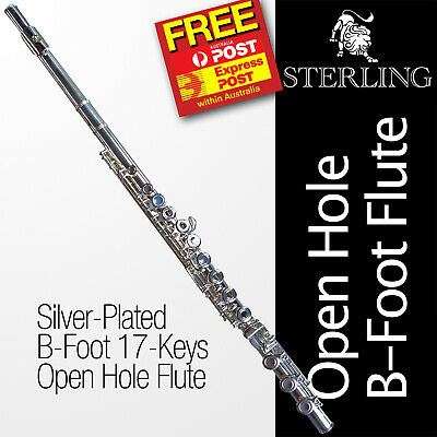 24K Gold-Plated B-Foot OHB  Flute • STERLING Open Hole B • With Case • BRAND NEW