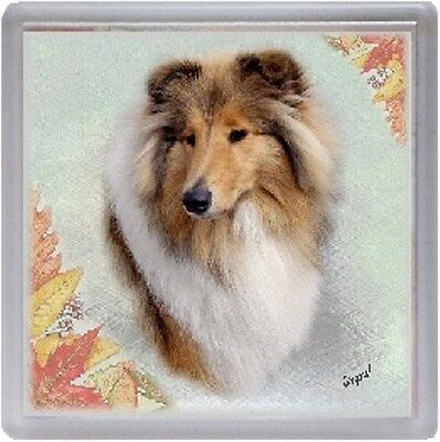 Self Adhesive Gift Labels by Starprint Rough Collie Dog Merle