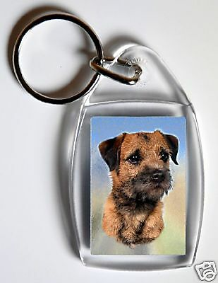 Border Terrier Key Ring By Starprint - No 1 - Auto combined postage
