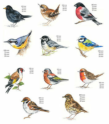 Bird Select Type & Size Waterslide Ceramic Decals Bx