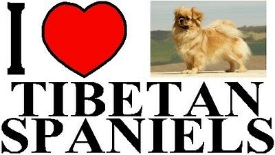 """/""""I Suffer from MULTIPLE  TIBETAN SPANIEL  SYNDROME/"""" Dog Car Sticker by Starprint"""